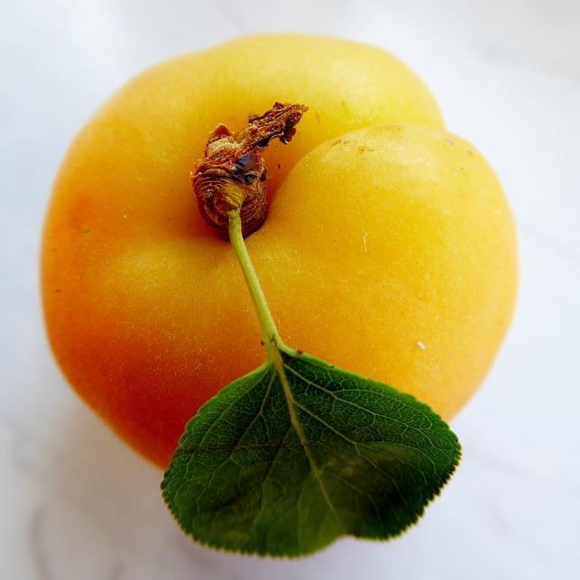 abrikozenpitten eten